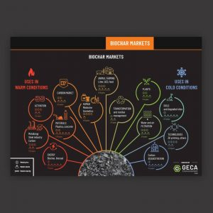 Biochar markets infographic cover