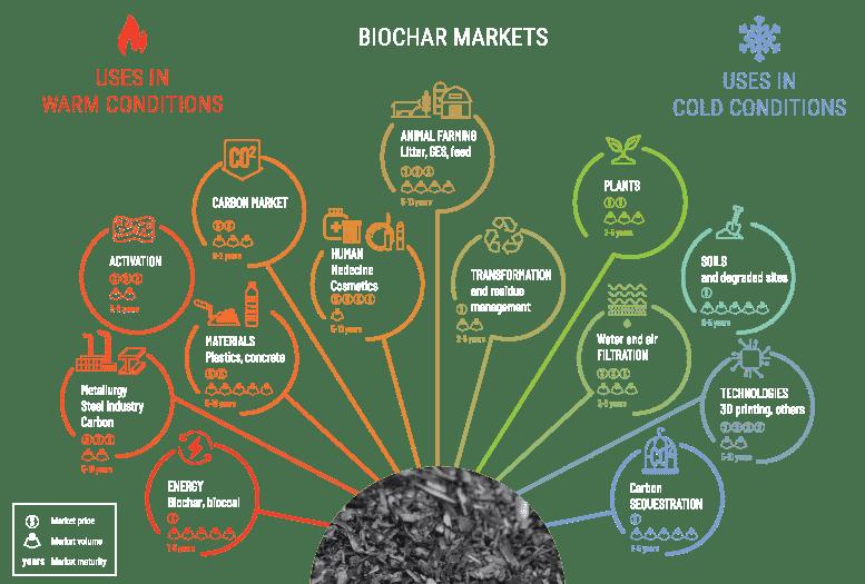Biochar markets infographic